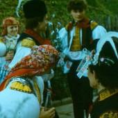 skenovat0043